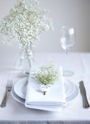 Babys-Breath-Place-Card